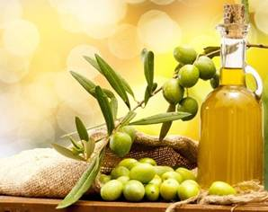 Olive oil is used to treat external piles